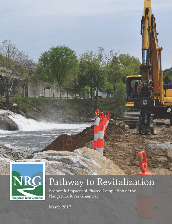 NRG Pathway to Revitalization Cover