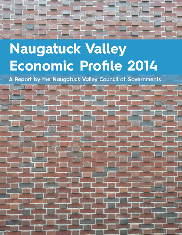 Regional Economic Profile Cover